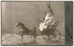 http://photo.niernsee.ru/files/gimgs/th-40_horse02.jpg