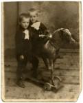 http://photo.niernsee.ru/files/gimgs/th-40_horse15.jpg
