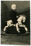 http://photo.niernsee.ru/files/gimgs/th-40_horse16.jpg