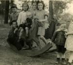 http://photo.niernsee.ru/files/gimgs/th-40_horse17.jpg
