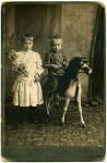 http://photo.niernsee.ru/files/gimgs/th-40_horse21.jpg